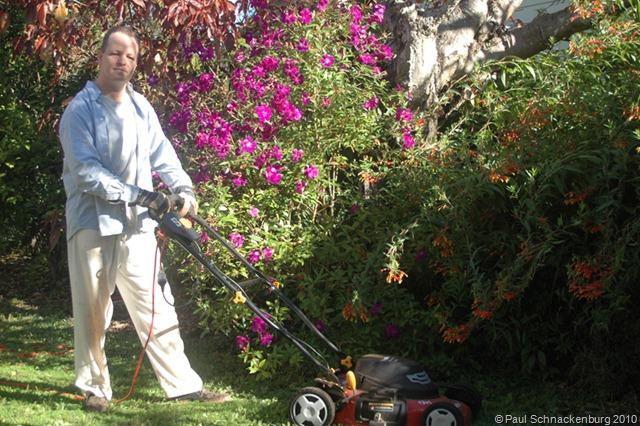 New_Lawn_Mower
